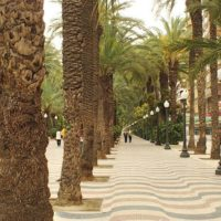 Ze średnią roczną temperaturą 17° C i jednym z najniższych wskaźników opadów w Hiszpanii, Alicante gwarantuje około 300 słonecznych dni w roku! Pobić to może jedynie nasza ukochana Malaga. W tym wypadku Alicante praktycznie gwarantuje udaną pogodę i udane wakacje niezależnie od terminu wizyty.