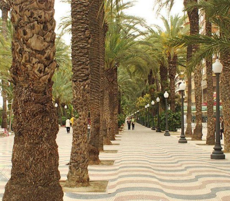wakacyjny kurs jezyka hiszpanskiego w Alicante